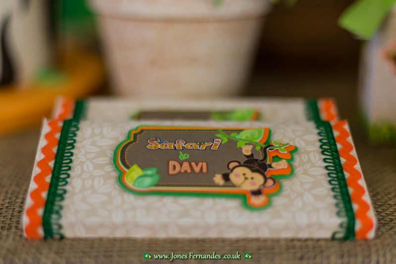 Davi 2 Anos - 018