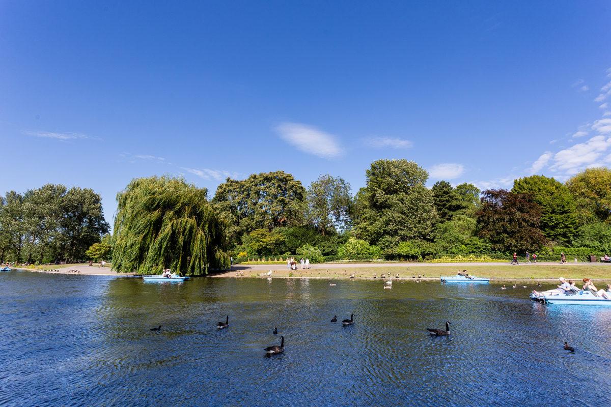 Um lindo dia no parque